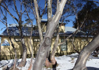 exterior-accommodation-hotham