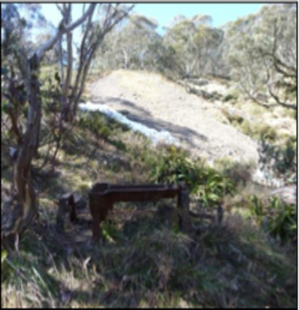 Hotham Southern Cross Mine Battery Chassis Remains